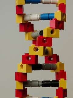 Lego DNA - mknowles