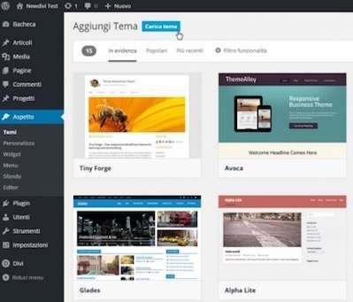 L'interfaccia per il controllo dei temi su WordPress