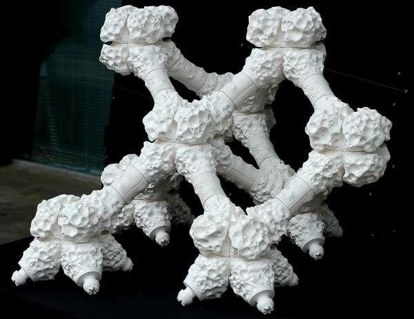 Una sezione della barriera corallina ricostruita con le stampanti 3D