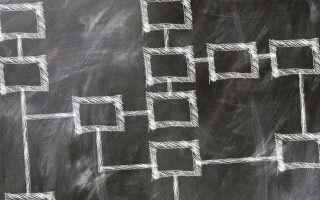 L'AgID definisce le competenze digitali per la PA