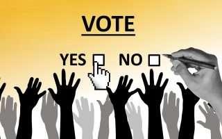 Parlamento europeo: elezioni e Web, servono regole