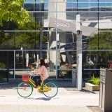 Gli USA contro Google su ricerche e advertising