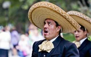 Il muro USA-Messico di Trump lo pagherà il porno
