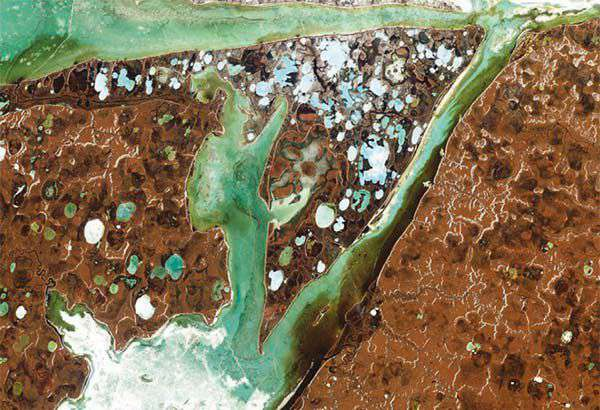 Un'immagine estratta dal volume Earth della NASA