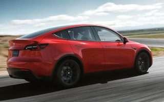 Tesla Model Y, le immagini del SUV elettrico