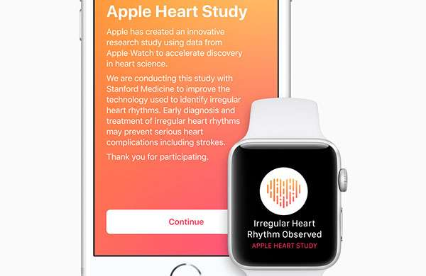 Apple Hearth Study