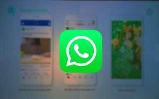 WhatsApp: annunci pubblicitari in arrivo nel 2020