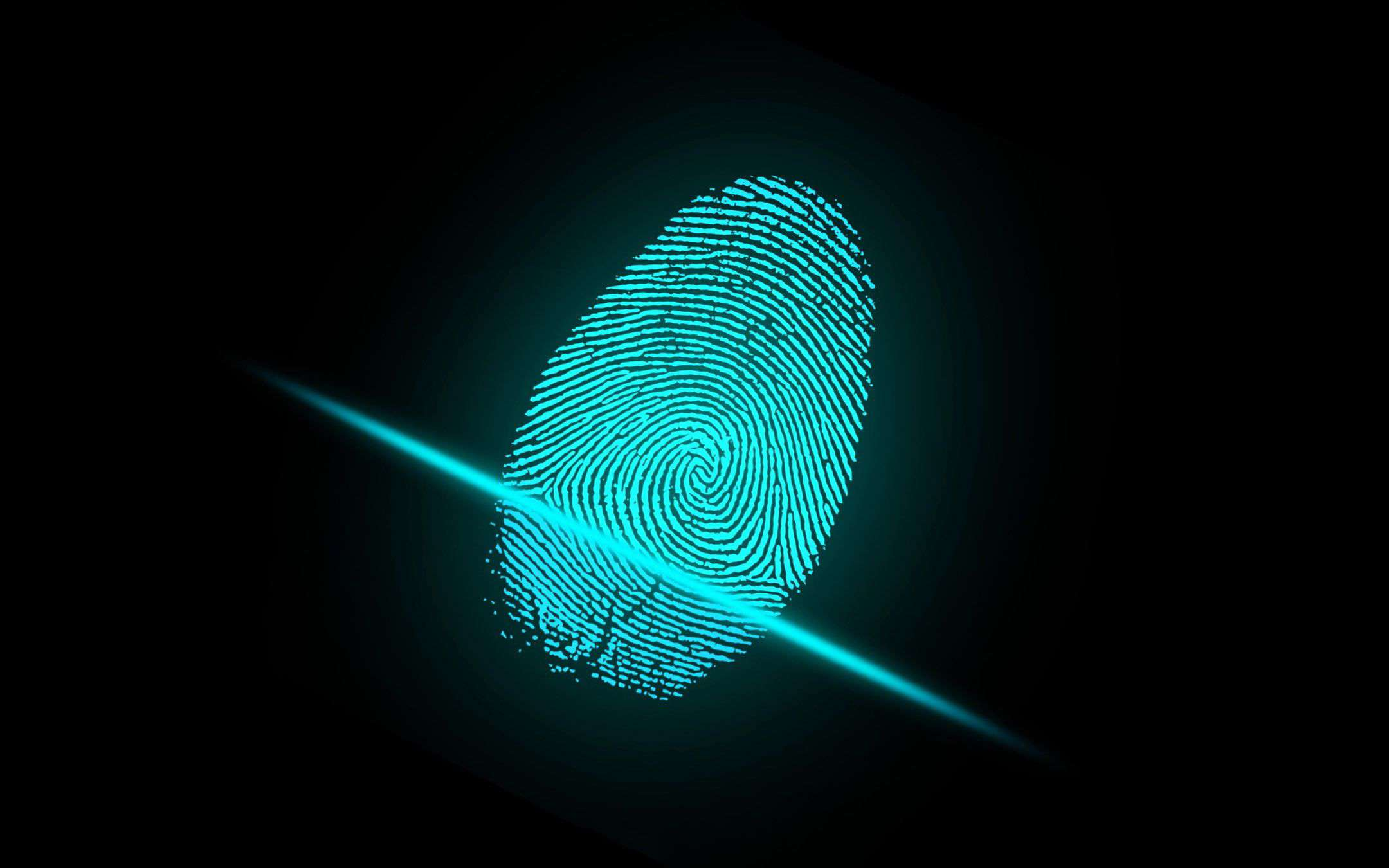 There will be more and more biometrics in digital payments
