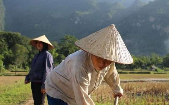 La trade war tra USA e Cina favorirà il Vietnam