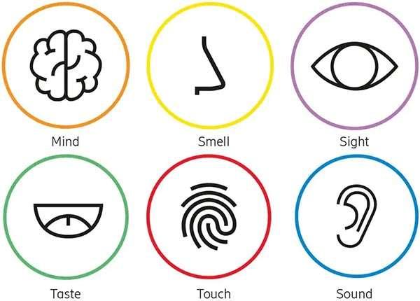 I sei sensi della Internet of Senses, secondo Ericsson