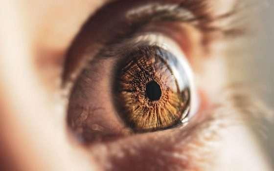 La lente a contatto AR di Mojo Vision esiste