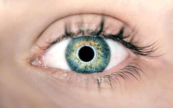 L'occhio artificiale creato in laboratorio