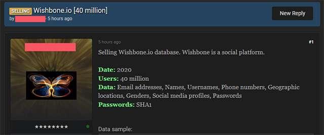 L'archivio rubato e venduto con le informazioni degli utenti di Wishbone