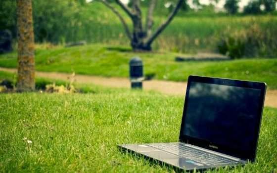 Scienze Agrarie e Forestali a Distanza: Laurea in Agraria Online