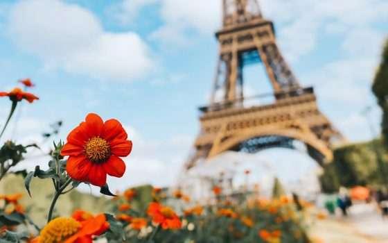 Francia: la rimozione in un'ora è incostituzionale