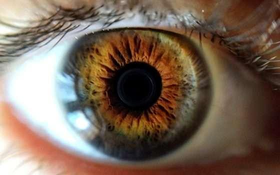 EC-Eye è l'occhio bionico creato in laboratorio