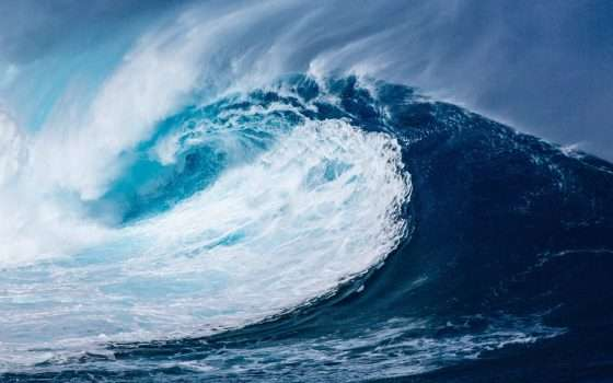 Tsunami open source: la scelta di Google
