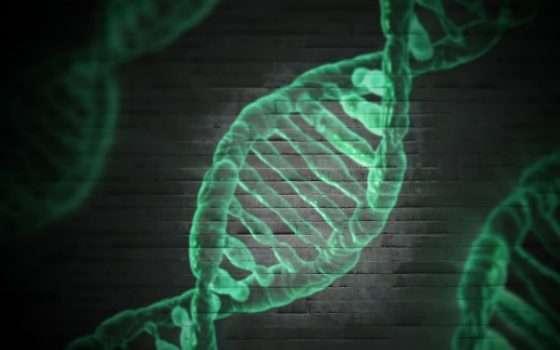 Quando il patrimonio genetico litiga con Excel