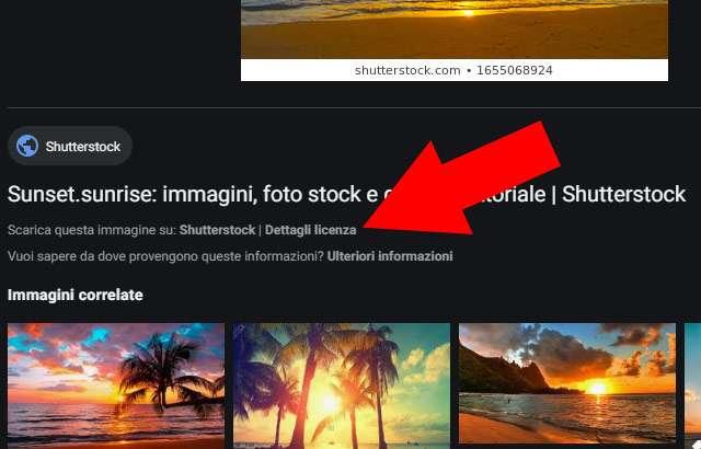 Novità per Google Immagini: informazioni più chiare sulle modalità di utilizzo dei file