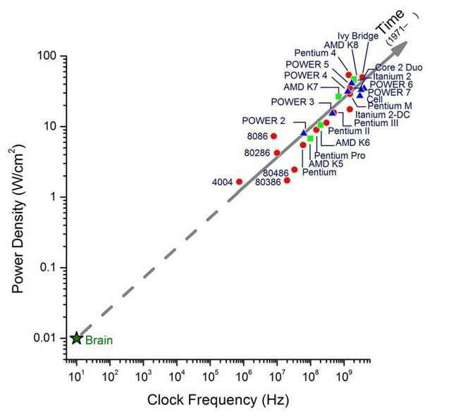 Confronto tra i chip della CPU e il cervello umano; Fonte: IBM