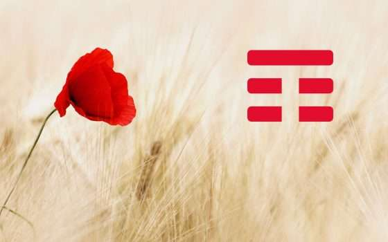 Confagricoltura e TIM: ecco l'Agritech Innovation Hub