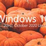 Windows 10: October 2020 Update in download