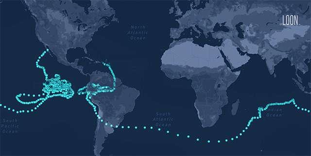 Il viaggio di uno dei palloni aerostatici di Loon, rimasto nella stratosfera per 312 giorni consecutivi