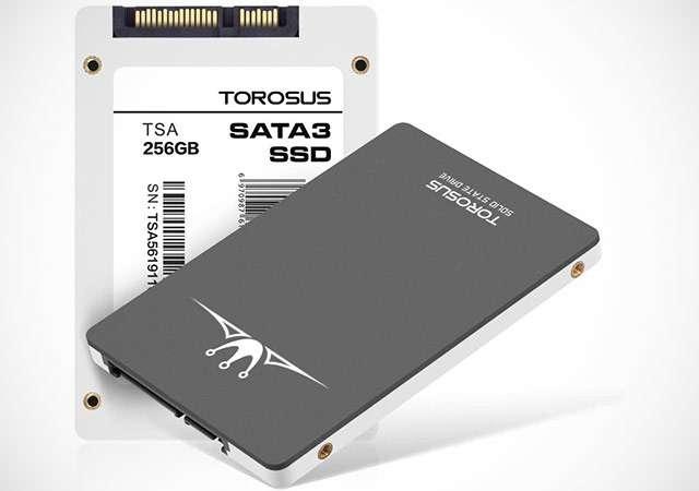 L'unità SSD da 256 GB di Torosus