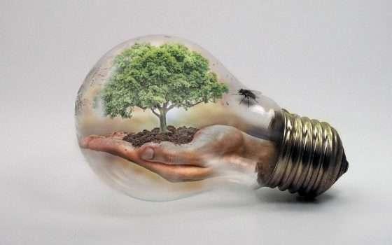 Impegno per un consumo verde, le prime 5 aziende