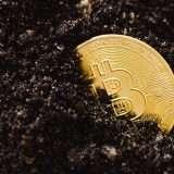 Bitcoin giù a picco: crollo del 10% in poche ore