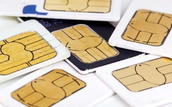SIM swapping e furto di criptovalute: dieci arresti