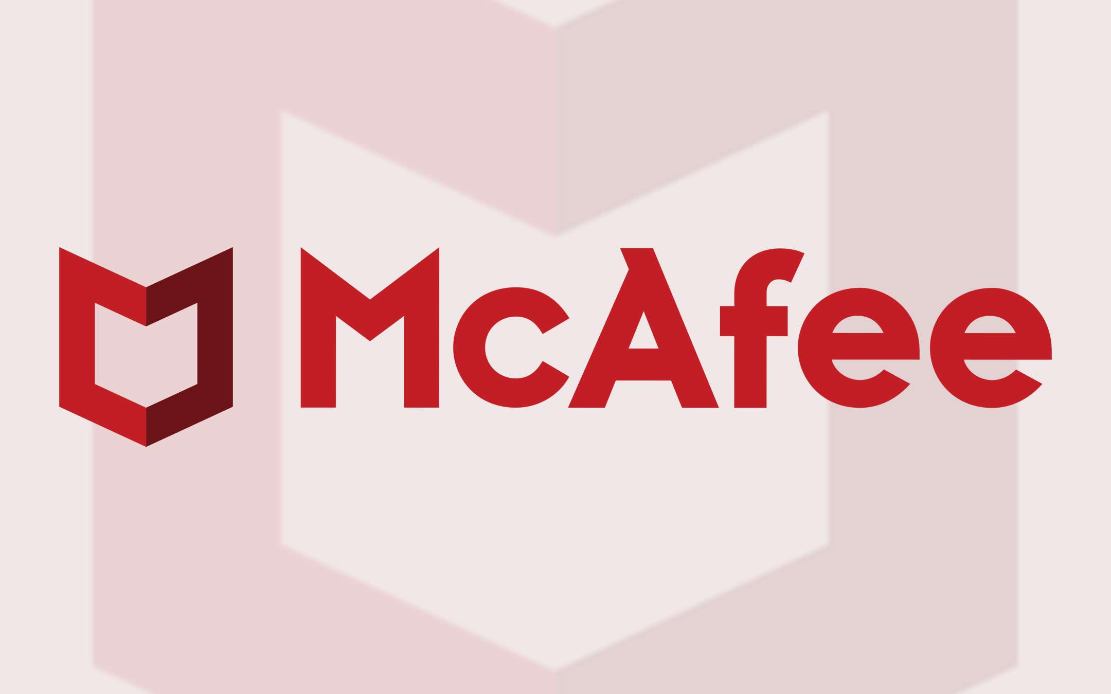 McAfee Consumer Only: Sells enterprise business