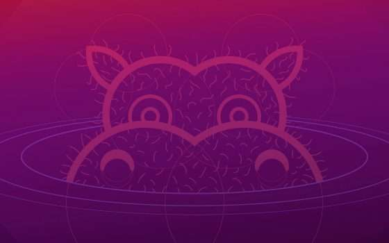 Ubuntu Hirsute Hippo, disponibile la beta