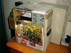 Il PC-serra