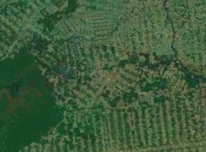 La deforestazione vista dal satellite