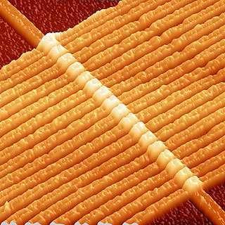 Immagine al microscopio di una batteria di memristori