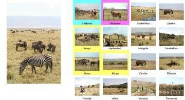 Tanzania non individuata