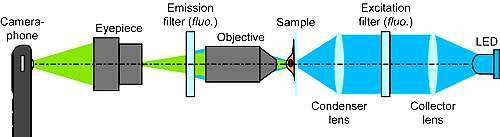 il cellscope di seconda generazione