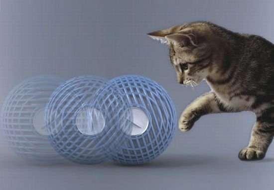 Cathumidifier