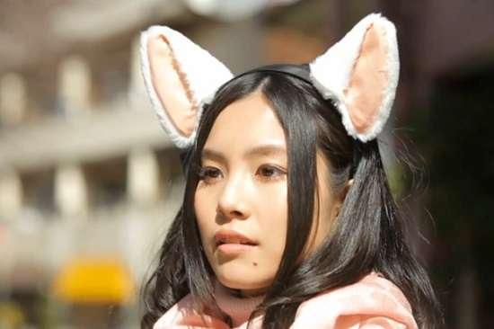orecchie da gatto