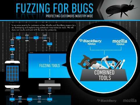 fuzzing for bugs